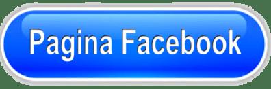 bottone pagina facebook